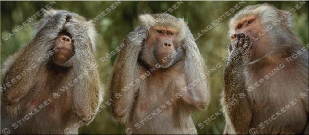 Kaffeebecher Drei Affen Nichts Sehen Nichts Hören Nichts Sagen